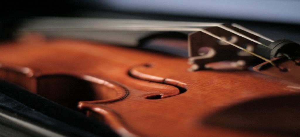 slika violina