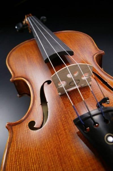 Kakšno violino izbrati